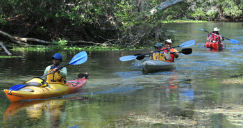 Kayaking at Crystal River
